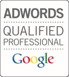logo-adwords03